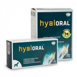 HYALORAL  20 KG 90 COM