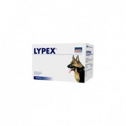 LYPEX 60 CAP VET